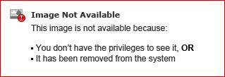 Avid Online Store: Product Download Help